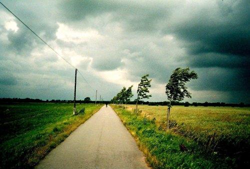 photo lomographie, A v�lo sur les routes des bords de l'Elbe